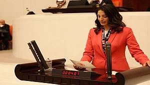 Semra Kaplan Kıvırcık TBBM'de Bütçe Görüşmelerinde Konuştu