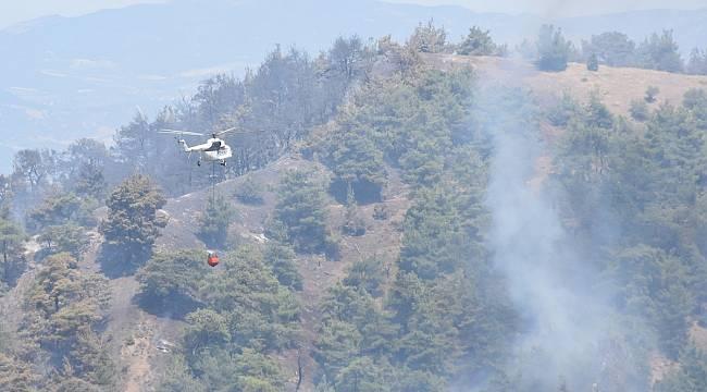 Turgutlu Ahmetli Sınırında Orman Yangını