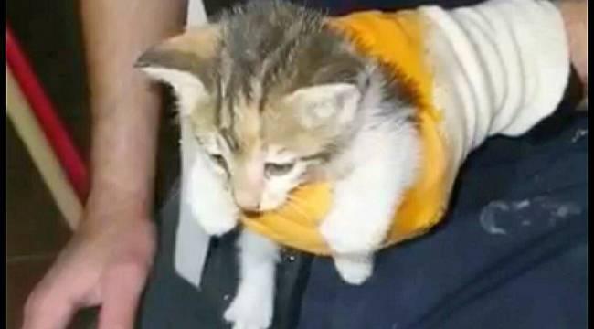 Turgutlu'da Lavabo Borusuna Sıkışan Yavru Kediyi İtfaiye Kurtardı