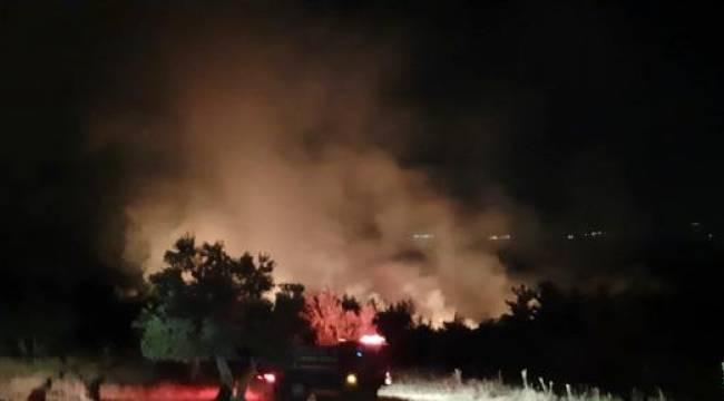 Soma'daki Orman Yangını Kontrol Altına Alındı